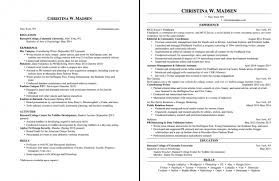 examples of 2 page resumes examples of resumes free resume
