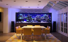 Huge Home Aquarium Аквариумы и рыбы Pinterest Aquarium - Home aquarium designs