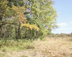 vacant land for sale landleader no reserve land auction near