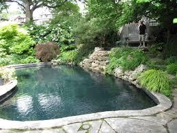 Backyard Paradise Greensboro Nc by Backyard Paradise Pools Splendora Tx Backyard And Yard Design