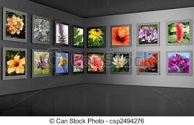 gallery clipart flower photography gallery exhibition concept flower