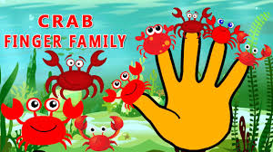 finger family cartoon crab nursery rhyme animation children