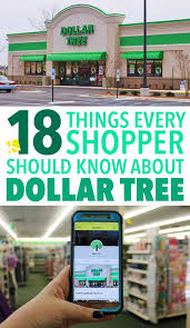 17 things every shopper should about dollar tree dollar