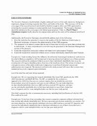 executive summary resume exle management summary sle best of executive summary resume
