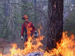 Wildfire Training Bc by Why Wildland Firefighters Keep Coming Back Infonews Ca