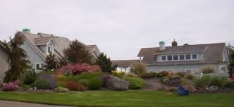 Ideas 4 You Front Lawn Landscaping Ideas To Hide Septic Lids The 25 Best Septic Mound Landscaping Ideas On Pinterest