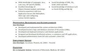resume wonderful java developer resume information security