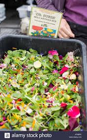 edible flowers for sale salad mix of micro greens and edible flowers for sale at