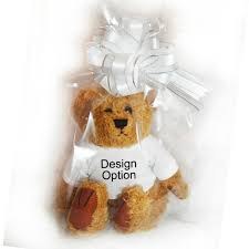 flower girl teddy gift gift wrapped personalised will you be our page boy teddy