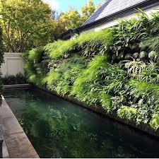 Vertical Garden Ideas Best 25 Vertical Gardens Ideas On Pinterest Succulent Wall