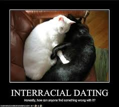Interracial Dating Meme - 50 best interracial swirl love images on pinterest interracial