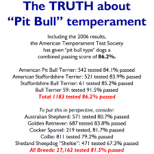 american pit bull terrier website the truth about pit bulls the pit bull hoax the atts