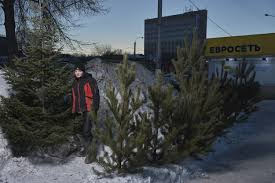 americans got christmas trees russians new year trees wired