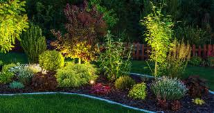 California Landscape Lighting Landscape Lighting Spartan Landscape Development