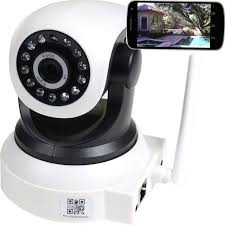 baby monitor black friday 45 best dog days fun and play images on pinterest animals dog