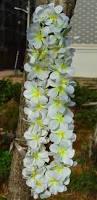 thanksgiving flowers free shipping online buy wholesale hawaiian leis from china hawaiian leis