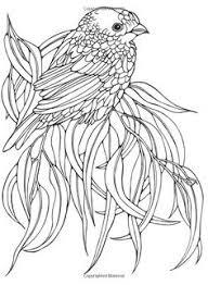 draw bird u2013 sketchbook challenge 35 sketchbooknation