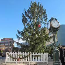 charlie brown and a city u0027s ugly christmas tree the san diego