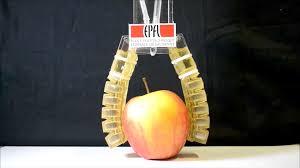 epfl researchers built a robot that you can eat for iros 2017 u2014 quartz