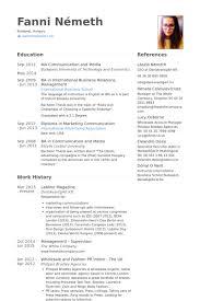 Uk Resume Example by Sales Advisor Resume Samples Visualcv Resume Samples Database