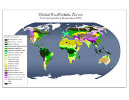 global zone map ipcc tier 1 global biomass carbon map for the year 2000