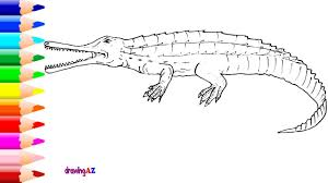 drawing and coloring rutiodon with colored and rutiodon coloring
