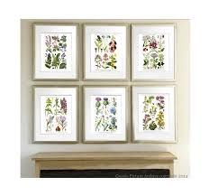 living room prints wild flowers botanical prints set of 6 botanical prints