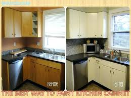 Painting Kitchen Cabinet Doors Only Bathroom Cabinet Doors Only Size Of Kitchen Way To Paint