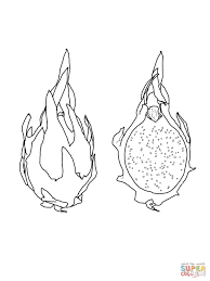 dragon fruit on tree coloring page free printable coloring pages