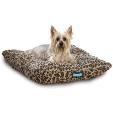small pet beds small pet beds white bed