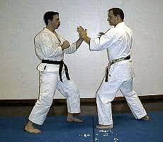 imagenes gif karate ssk power karate