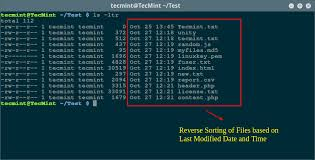 tutorial linux sort how to sort output of ls command by last modified date and time