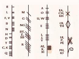 celtic tree calendar ogham alphabet
