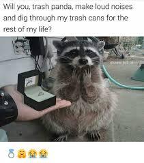 Meme Trash - will you trash panda make loud noises and dig through my trash