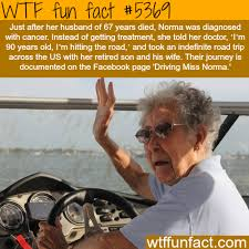 fun things for 67 years old driving miss norma wtf fun facts interesting facts pinterest