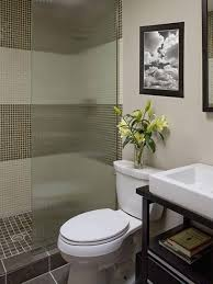 Bathroom Shower Design Ideas Bathroom Cabinets Small Bathroom Designs With Shower Only Small