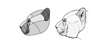 draw bears big fluffy u0026 clumsy autodesk sketchbook