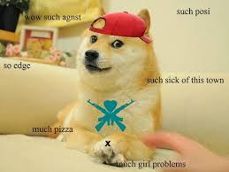 Doge Meme Tumblr - sociology 167 november 2013