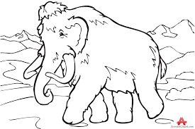 outline mammoth drawing clipart free clipart design download