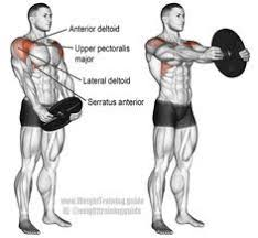Muscles Used When Bench Pressing Incline Straight Leg And Hip Raise A Compound Exercise Target