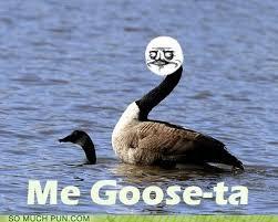 Goose Meme - me goose ta puns pun pictures