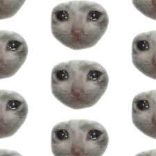 Sad Cat Meme - crying teary eyed sad cat meme hardcover journals by cleverjane