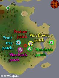 Fruit Trees Runescape - herblore habitat pages tip it runescape help the original
