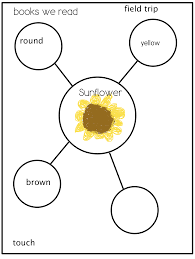 Thinking Map Joyful Learning In Kc Sunflowers And Summer