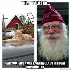 Cat Beard Meme - only in alaska can you have a cat santa claus in local