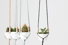 Simple Macrame Plant Hanger - wine and macram礬 plant hangers skinnyskinny houseplants