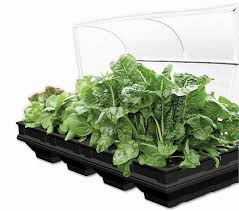 How To Make Self Watering Planters by Raised Garden Bed Kits And Contained Gardening Vegepod