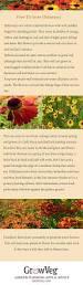 395 best english cottage gardening images on pinterest flower