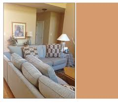 i want a warm and cozy living room decorating by donna color peach paint