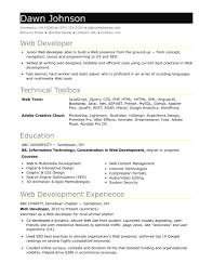 entry level java developer resume sample sample resume for an entry level it developer monster com